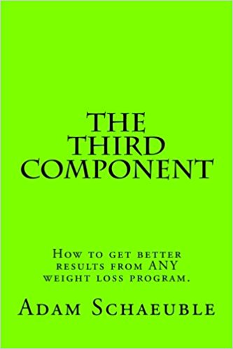 The Third Component by Adam Schaeuble